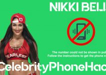 Nikki Bella real phone number 2019 whatsapp hacked leaked
